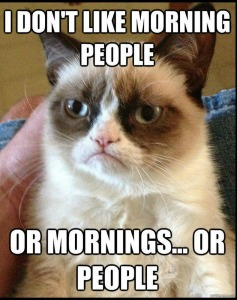 grumpy cat mornings